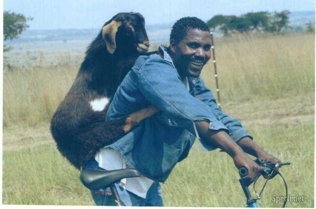 来自非洲原始部落让你捧腹大笑的场景