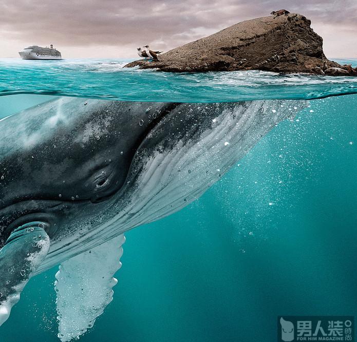 海平面以下的真相
